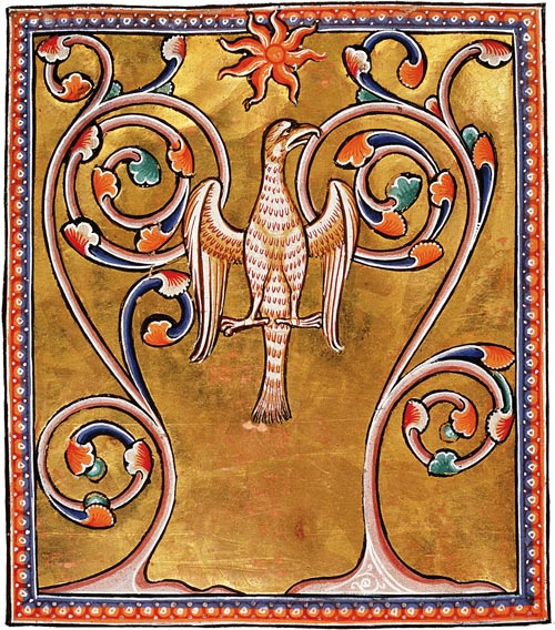Phoenix, The Medieval Bestiary (folio 55), University of Aberdeen.